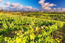 d'Arenberg Wines, McLaren Vale, Australia