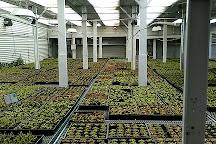 Gubler Orchids, Landers, United States
