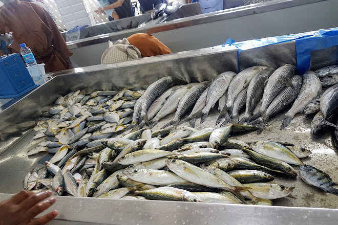 Visit Mutrah Fish Market on your trip to Muscat or Oman