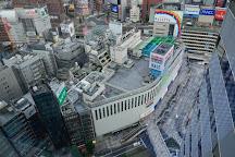 Nikon Plaza Shinjuku, Nishishinjuku, Japan