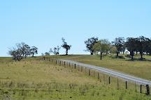 Red Cow Farm - Open Garden, Sutton Forest, Australia