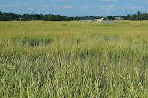 Marshlands Conservancy, Rye, United States