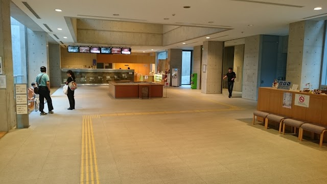 Musée préfectoral Chikatsu Asuka d'Osaka