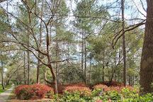 Azalea Park & Sculpture Garden, Summerville, United States