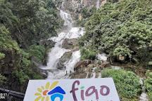 Figco Holidays, Colombo, Sri Lanka