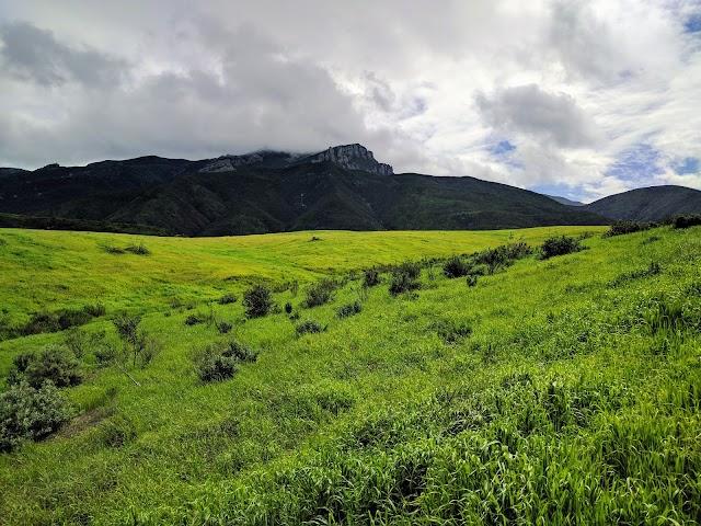 La Jolla Valley Natural Preserve