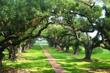 Old River Road Plantation Adventure, New Orleans, United States