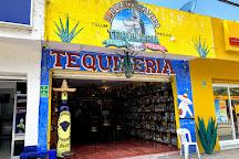 El Burro Agavero Tequileria, Tulum, Mexico