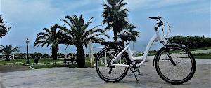 E-Wheel Perú 4