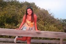 Mangel Halto Beach, Savaneta, Aruba