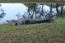 Coral Oaks Golf Course, Cape Coral, United States