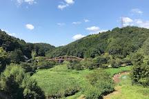 Otaki Valley, Toyota, Japan