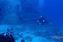 Blue Ocean Dive Centers & Resorts, Marsa Alam, Egypt