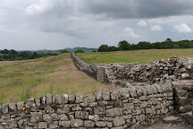 Peter Carney: Hadrian's Wall Guide, Henshaw, United Kingdom