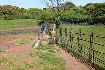 Chiba Zoological Park, Chiba, Japan