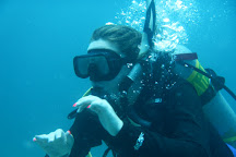 Scuba Safaris, New Castle, St. Kitts and Nevis