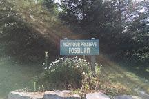 Montour Preserve, Danville, United States