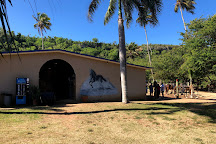 Tropical Trail Rides - Isabela, Isabela, Puerto Rico