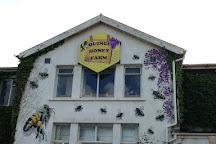 Quince Honey Farm, South Molton, United Kingdom