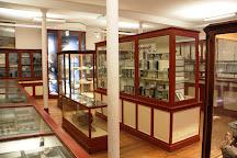 Musee d'Histoire Naturelle de Rouen, Rouen, France