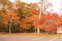 Aoba Park, Chitose, Japan