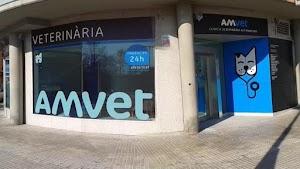 Amvet Clínica Veterinària Alt Maresme