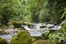 Green Vacations Costa Rica