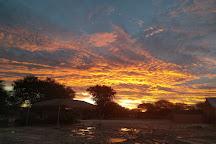 Cheetah Conservation Fund, Otjiwarongo, Namibia