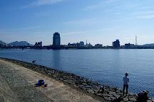 Pleasure Boat at Lake Shinji- The Hakucho, Matsue, Japan