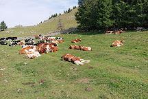 Parc Jura vaudois, Saint-George, Switzerland