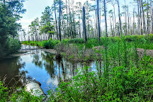 Blackwater National Wildlife Refuge, Cambridge, United States