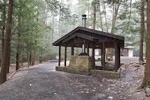 Raymond B. Winter State Park, Mifflinburg, United States