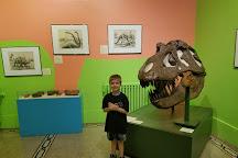 Everhart Museum, Scranton, United States