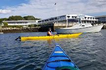 Tidal Transit Kayak, Boothbay Harbor, United States