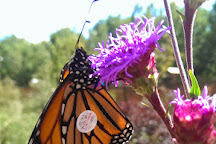 Butterfly Gardens of Wisconsin, Appleton, United States