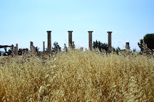 The Sanctuary Of Apollo, Limassol, Cyprus