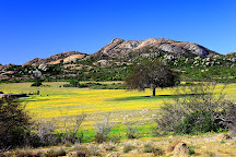Namaqua National Park, Northern Cape, South Africa