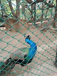 Manda Zoo Park