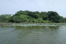 Ousteri Lake, Pondicherry, India