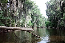 Palm Point Nature Park, Gainesville, United States