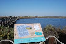 Bolsa Chica Ecological Reserve, Huntington Beach, United States