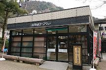 Mt. Kinka Ropeway, Gifu, Japan
