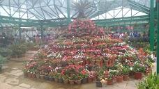 Government Botanical Garden ,Ootacamund ooty