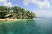 Freshwater Plantation - Aore Island, Aore Island, Vanuatu