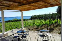 Putalj Winery, Split, Croatia