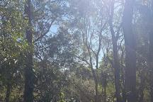 Tingalpa Creek Reserve, Brisbane, Australia