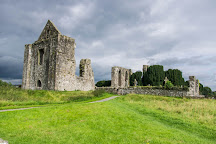 Cathedral of St Peter and St Paul, Trim, Ireland