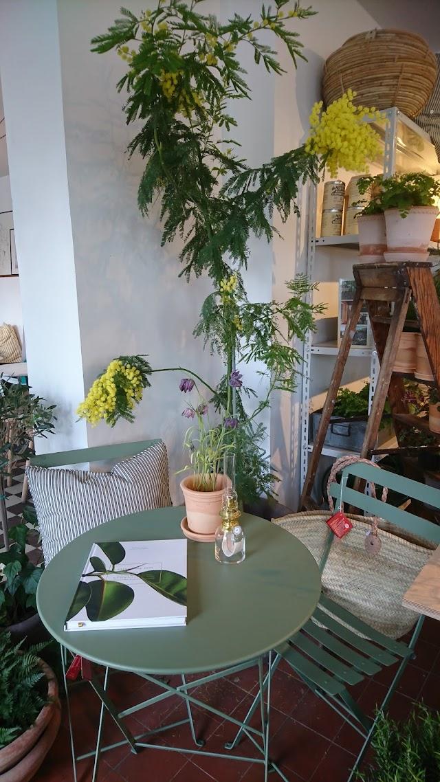 Gejersgatan 53 Cafe O Butik