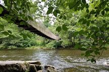 Dark Island Swinging Bridge, Townsend, United States