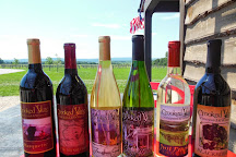 Crooked Vine Vineyard & Winery, Alanson, United States